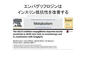 エンパグリフロジンがインスリン抵抗性を改善